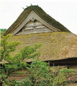 左側面屋根